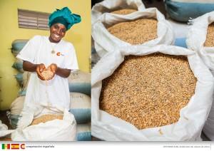 Développement rural, sécurité alimentaire et nutrition